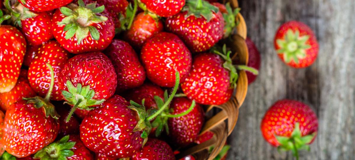 Class One English Strawberries
